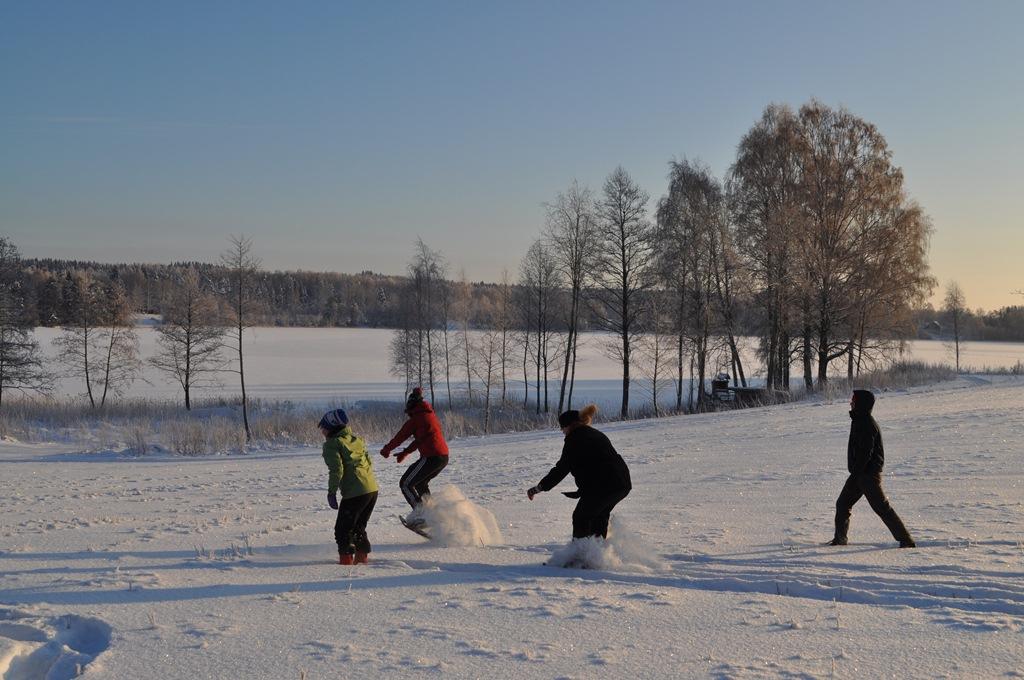 Tiimin strategiaviikonloppu 28.-29.1.2012
