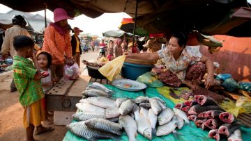 En kvinna säljer fisk