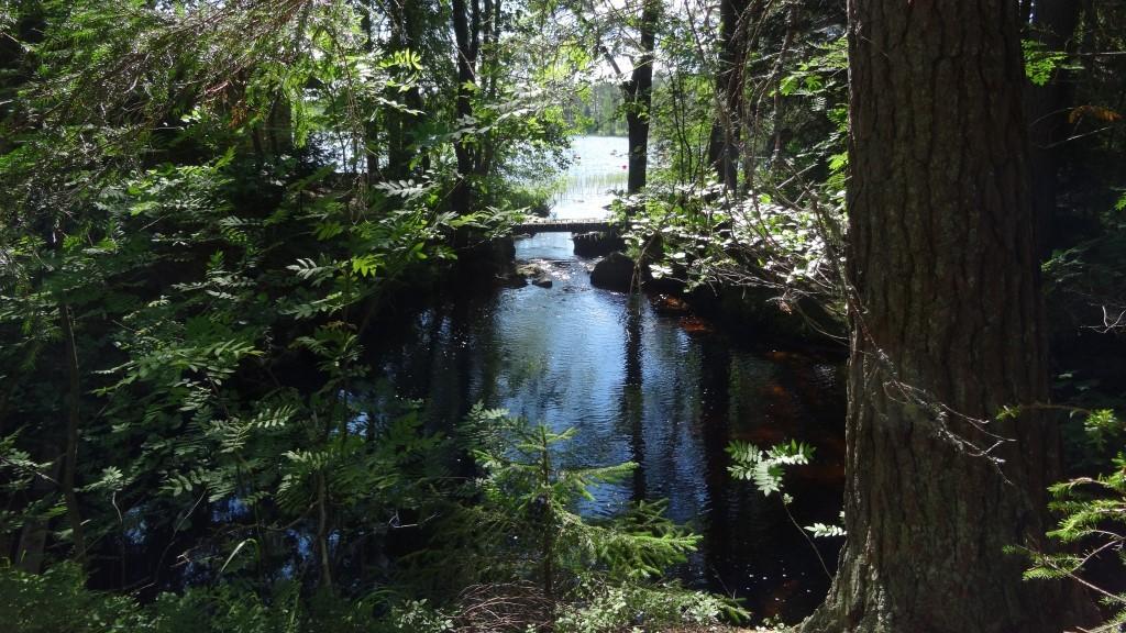 Poikien ja tyttöjen keskuksen suurleiri Kipinä järjestettiin kauniissa metsämaisemassa. Myös Changemaker oli mukana leirillä.